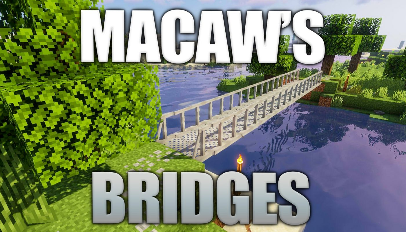 Macaw's Bridges