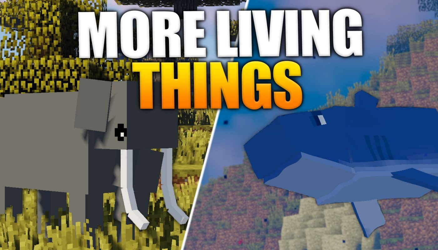 More Living Things