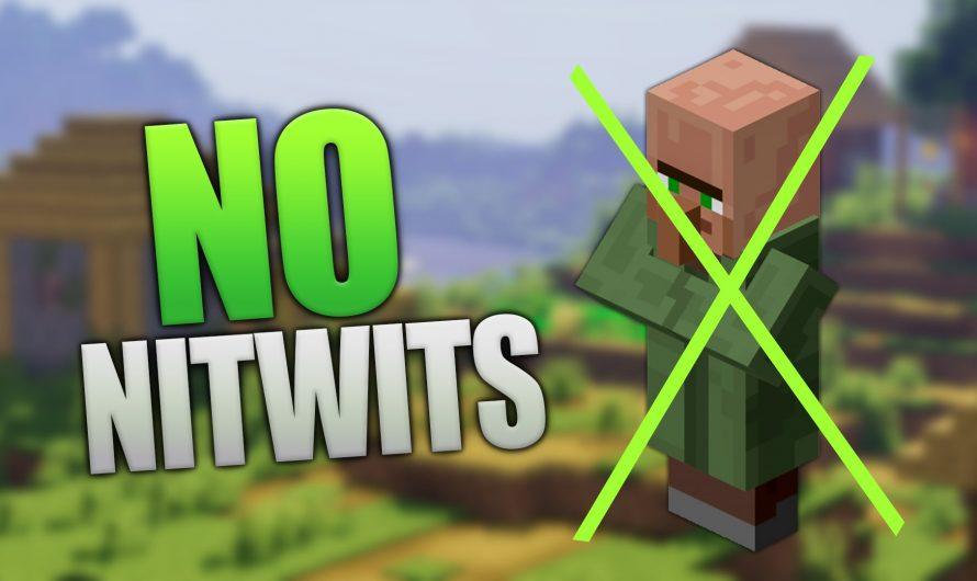 No Nitwits