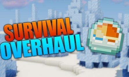 Survival Overhaul