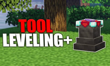 Tool Leveling +